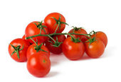 Ripe fresh cherry tomatoes on branch — Stock Photo