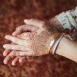 Mehandi — Stock Photo #9984752