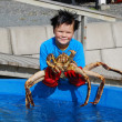 Norwegian youthful fisher with an alive king crab — Stock Photo