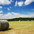 Gathered field with straw bales — Stock Photo
