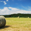 Stock Photo: Harvested field with straw bales