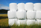 Agricultural stack with straw bales packaged — Stock Photo