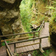 Marienschlucht ravine in summer - Stock Photo