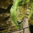 Marienschlucht ravine in summer — Stock Photo