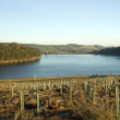 Royalty-Free Stock Photo: A far side view of Langsett reservior