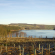 A view across Langsett Reservior — Stock Photo