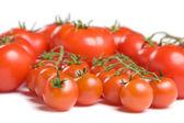 Tomatoes-2 — Stock Photo