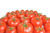 Group of tomatoes-26 — Stock Photo