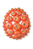 Group of tomatoes-19 — Stock Photo