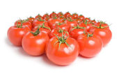 Group of tomatoes-14 — Stok fotoğraf
