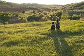 Jeune femme et son chien — Photo