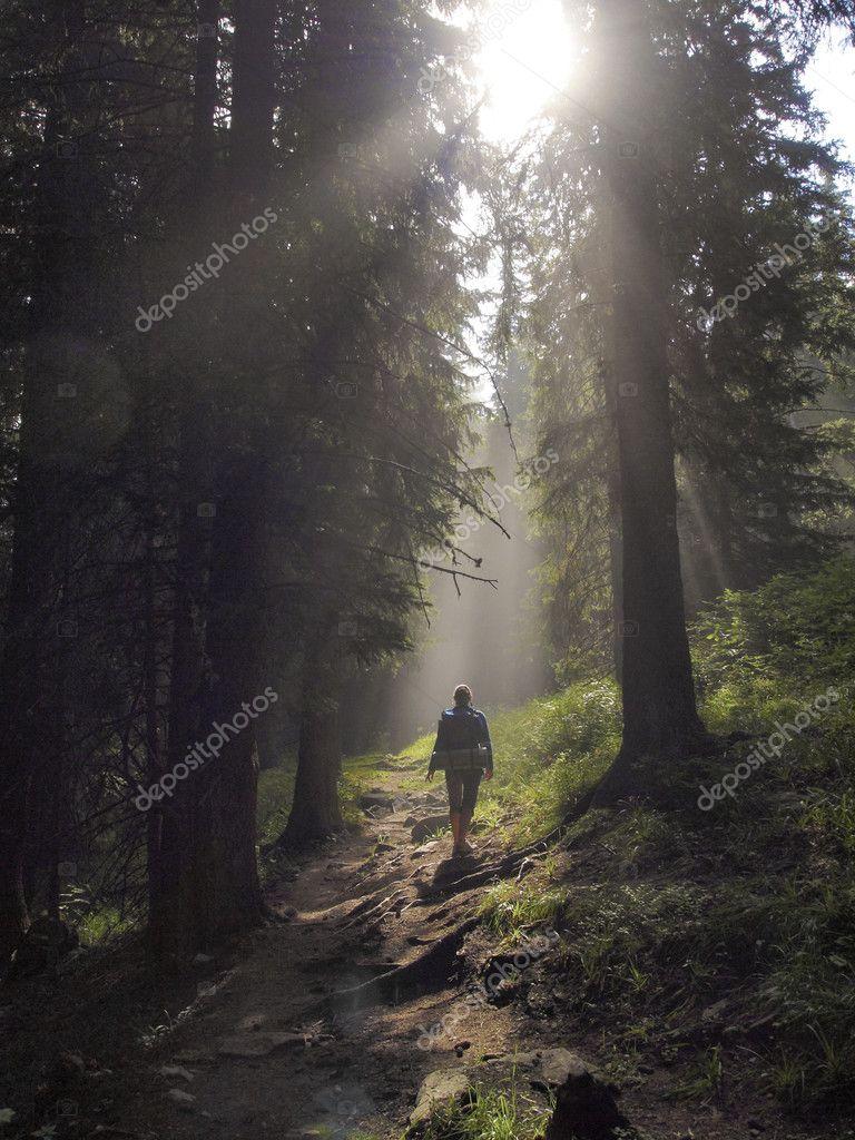 Фотообои Enlightened way