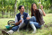 Couple of winegrowers with glasses of wine — Stock Photo