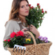Florist holding basket of flowers — Stock Photo