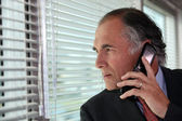 Senior businessman looking through blinds whilst making call — Stock Photo