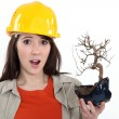 Construction worker holding a dead bonsai - Stock Photo