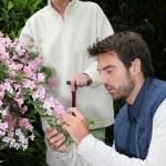Garten Pflege — Stockfoto