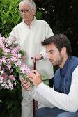 Péče zahrada — Stock fotografie