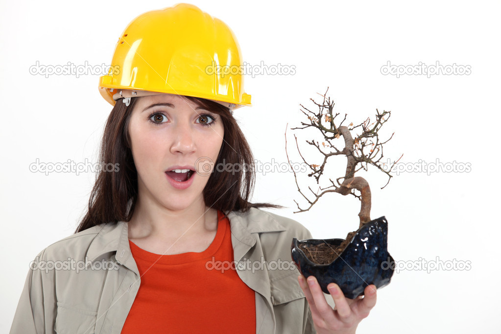 Construction worker holding a dead bonsai  Stock Photo #10025193