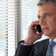 Executive phone in front of window — Stock Photo #10031311