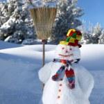 Snowman — Stock Photo #10093478