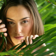 Woman hiding behind a plant - Stock Photo