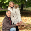 Couple of happy pensioners picking chestnuts — Stock Photo