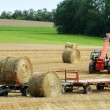 Baling hay — Stock Photo #10140043