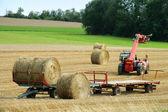 Baling hay — Stock Photo