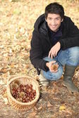 Landscape picture of young picking chestnuts — Stock Photo