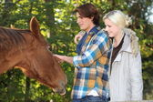 Couple stroking horse — Stock Photo