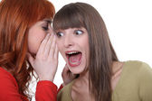 Women sharing a shocking secret — Stock Photo