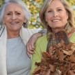 Stock Photo: Two women raking leaves