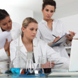 Researchers in the laboratory — Stock Photo