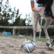 Playing horseball — Foto de Stock