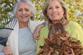 Two women raking leaves — Stock Photo