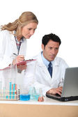 Lab assistants on computer — Stock Photo