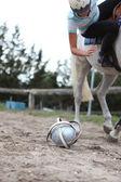 Playing horseball — Стоковое фото