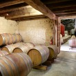 Rows of barrels in a cellar — Stock Photo