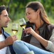 Couple sampling wine whilst visiting vineyard — Stock Photo #10278157