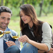 Stock Photo: Wine Tasting in field