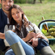 Couple with a glass of wine and basket of grapes — Stock Photo