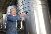 Winemaker with a glass of wine in the cellar — Stock Photo