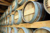 Barrels stored in a cellar — Stock Photo