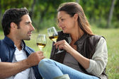 Couple sampling wine whilst visiting vineyard — Stock Photo