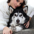 Portrait of a young woman with husky - Stock Photo