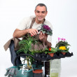 Stock Photo: Gardener knelt by plants