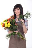 Studio záběr květinářství — Stock fotografie