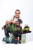 Gardener knelt by plants — Stock Photo