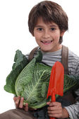 Cheeky lad carrying, vegetables, — Stockfoto